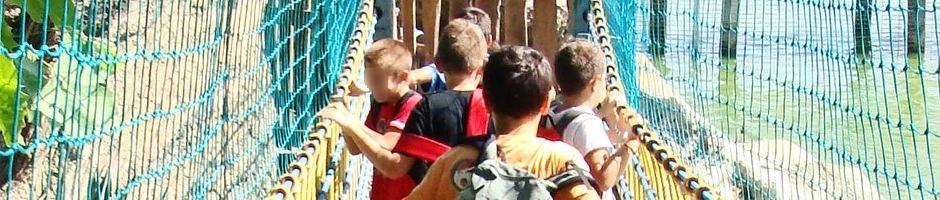 Soggiorno estivo a Tarquinia Lido, nel Lazio, organizzato da Coop Alice