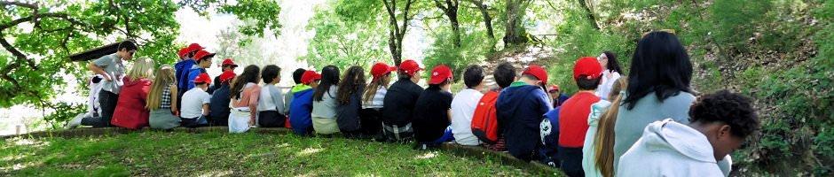 Campi scuola di Cooperativa ALICE Roma